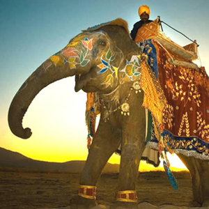 Rajasthan Tour Package (10 Nights / 11 Days)